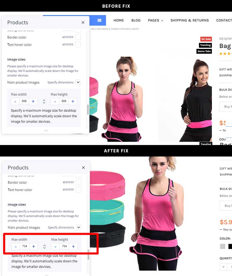 Fix product image carousel in version 4.2